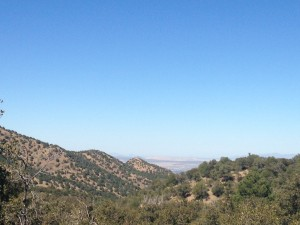 A view from the top of Madera Canyon.