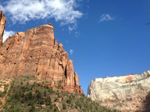 An example of all the different colors in Zion National Park.