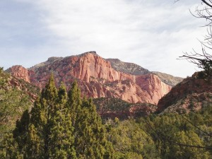 The view from one of the trailheads in Kolob.