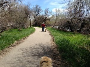 The City of Casper had a nice trail system through town along the North Platte River. Even though it rained almost every day we were in town, we did manage to find a daily break in the weather and get the dogs a proper walk.