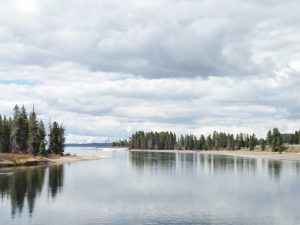 This is where the Yellowstone River empties into Yellowstone Lake.