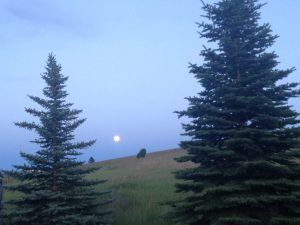 Full moon from our nightly dog walk.