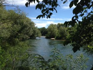 A glimpse of the Boise River from one of our many daytime walks.
