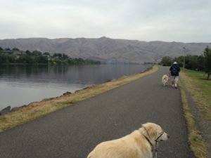 We drove over to Lewiston, ID and Clarkston, WA to look around. Lewiston had a nice walking trail along the Snake River where it intersects with the Clearwater River (which is brown).