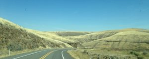 "This is what most of our drive from Walla Walla to Potlatch looked like. They call this part of Washington State ""The Palouse"". The curvy roads had me a little kooky, but the traffic was light and I was grateful for that."
