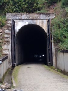 The Route of the Hiawatha bike trail started with a 1.7-mile long dark, wet, cold tunnel. All bicyclists must have a helmet and a light to ride on the trail. You can see some riders emerging from the black just after we made it back to daylight.